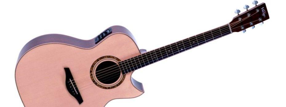 VINTAGE V1200N elektro-akustická kytara Grand Auditorium Cutaway